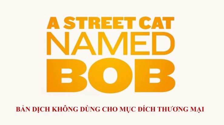 streetcatbob